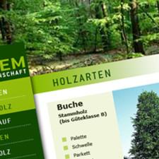 Forstgenossenschaft Lachem